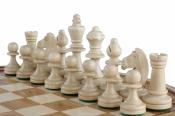 шахматы Рубин